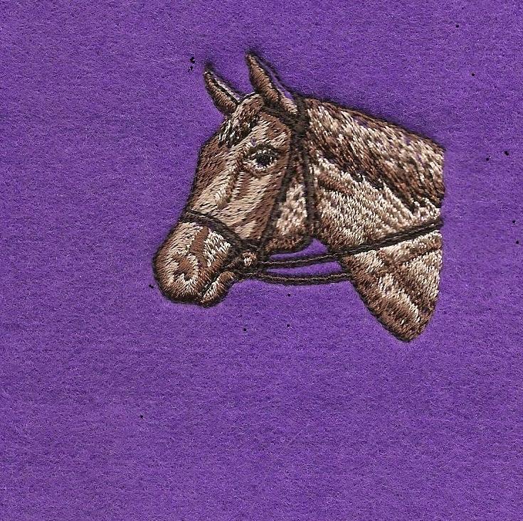Bronte jacket personalised horse riding blouson