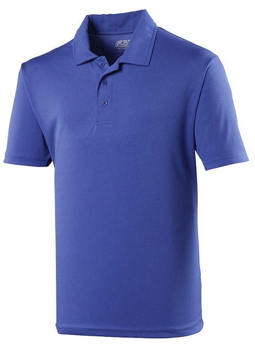 School senior cool polo shirt county sports and schoolwear for Cool polo t shirts