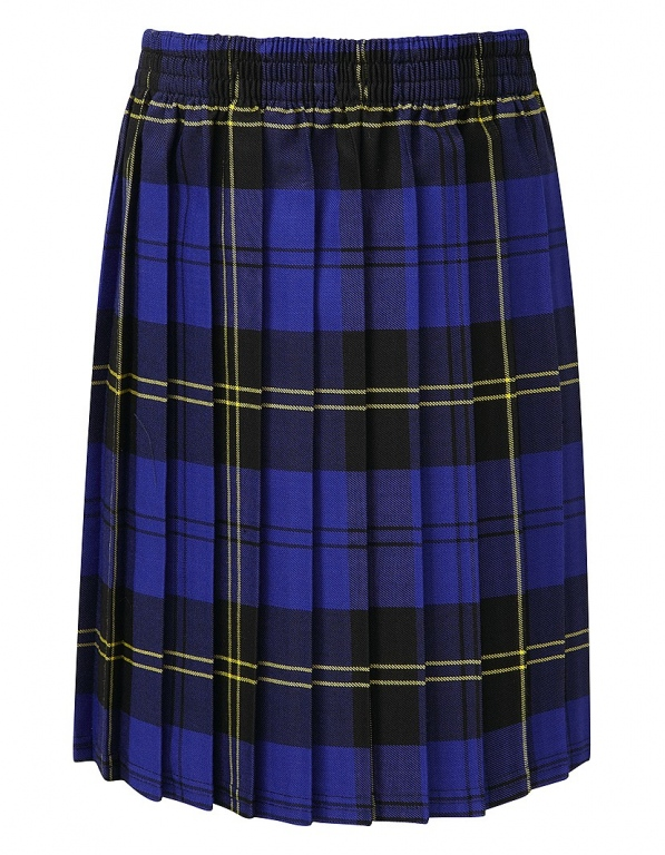 School Tartan Skirt Junior Pull On Skirt Knife Pleat